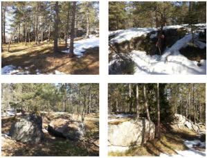 Bilder från terrängen  till Lidingös medeldistans på söndag. (Tagna 1/4)