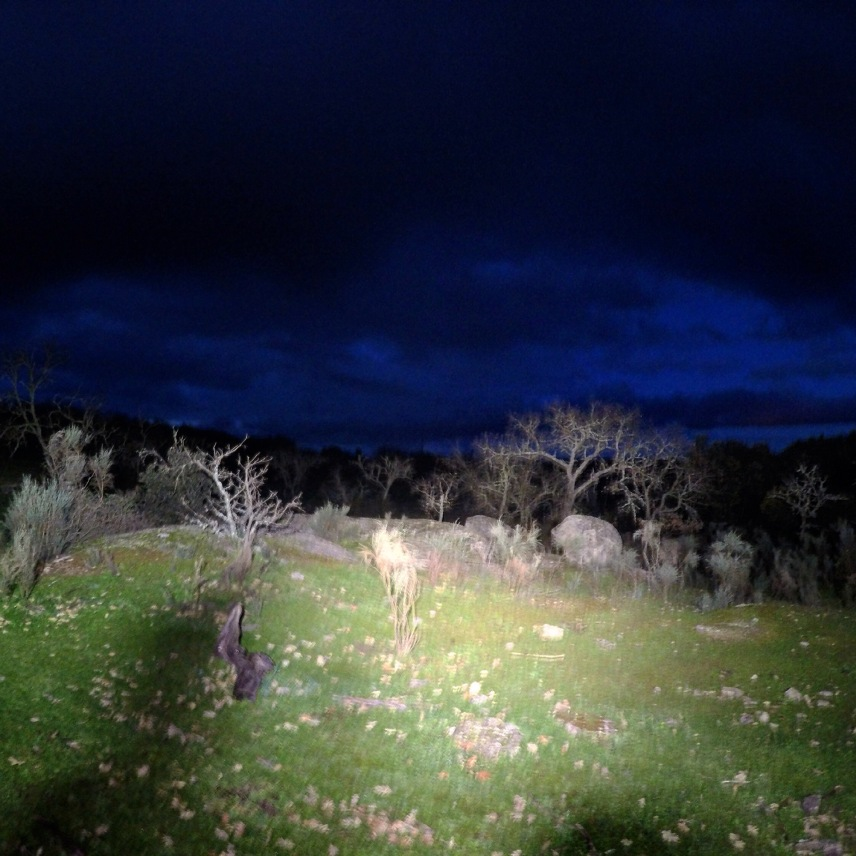 Alla olika terränger får något visst över sig på natten.