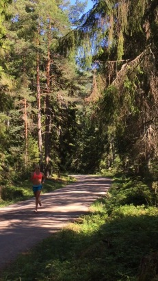 Känslan av att bara glida fram på skogsbilvägarna i de sörmländska skogarna.