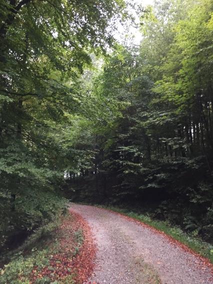 Det blev många kilometer på dessa grusvägar. Både på de kortare och längre sträckorna.