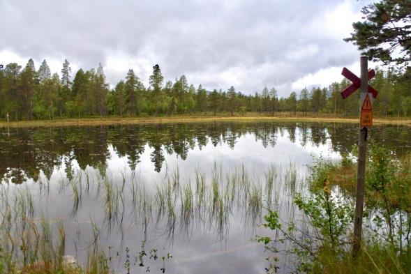 Fint skogs- och myrlandskap de första kilometrarna längs leden.