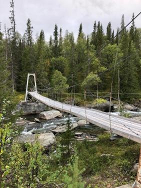 Vände strax efter bron när stigen försvunnit helt.